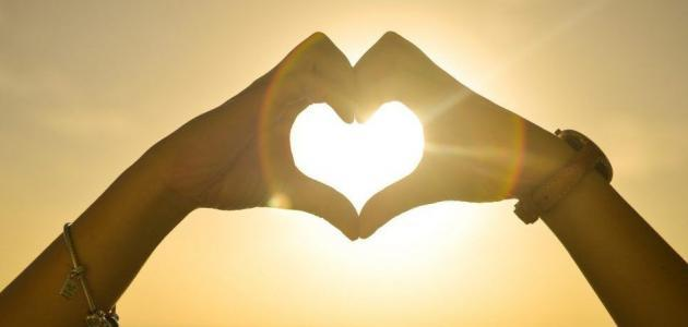 Hand heart, benefits of sunlight, lack of sunlight   Shawn Phillips Personal Trainer & Nutritionist Los Angeles